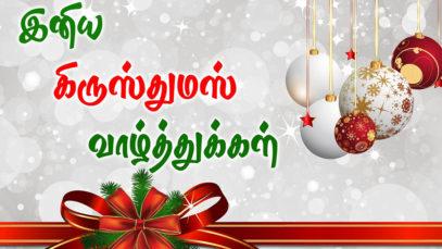 Happy-Merry-Christmas-Whatsapp-Status-Message (12)