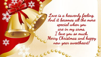 Happy-Merry-Christmas-Whatsapp-Status-Message (5)