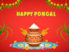 Happy-Pongal-Wishes (7)