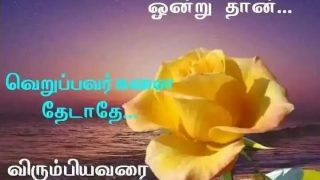 Life Quote Good Morning